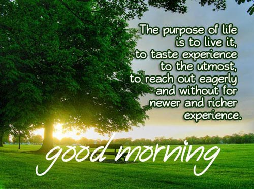 good morning inspirational quotes the purpose of life