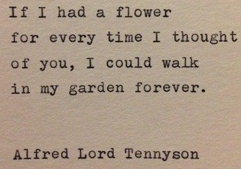 Quotes About Love Unique : Unique Quotes About Love Garden Unique Love Quotes