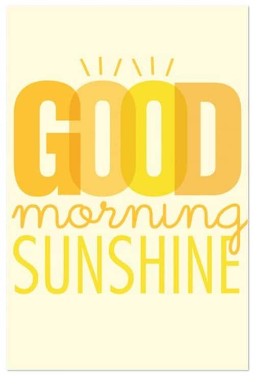 Sunshine Good Morning Quotes