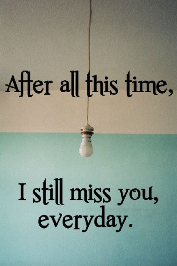 After All This Time I Still Miss You Everyday Longing For A Lost Lover Quotes