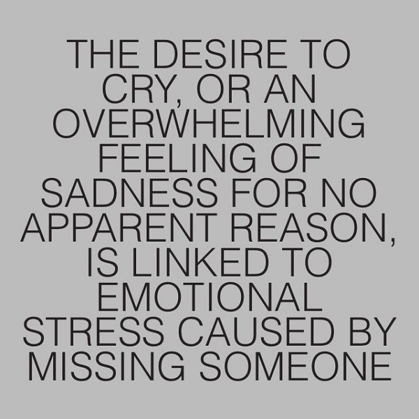Missing Someone Quotes Amazing 33 Quotes About Missing Someone You Love