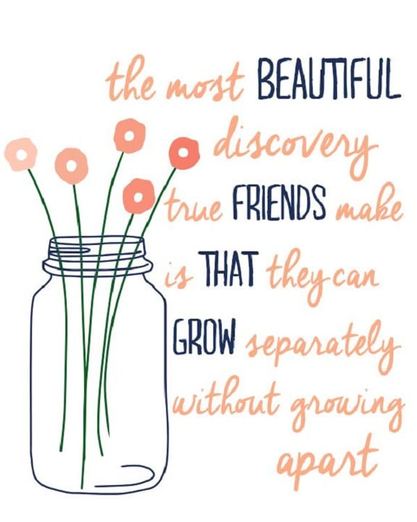 Quotes About Friendship Distance Amazing 52 Best Quotes About Friendship With Images
