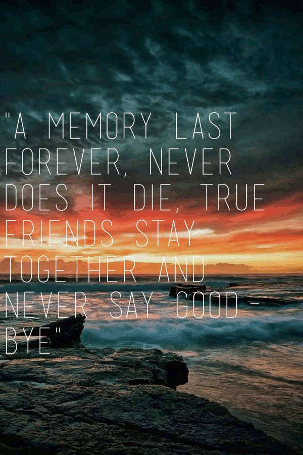 Farewell Quotes For A Close Friend : Inspirational and funny farewell quotes