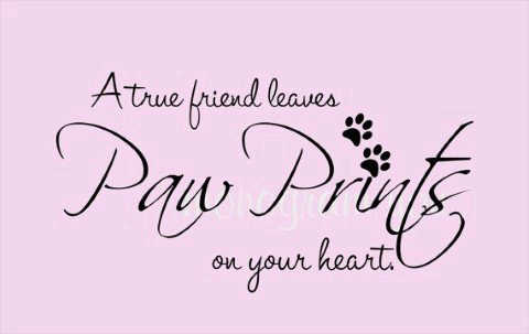Paw prints i miss you quotes.