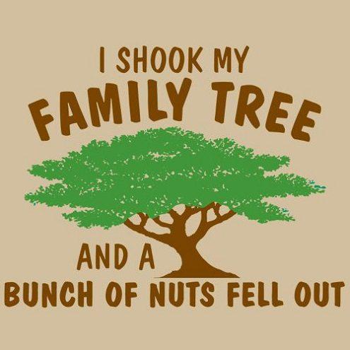 Funny K-i-s-s-i-n-g In A Tree #11