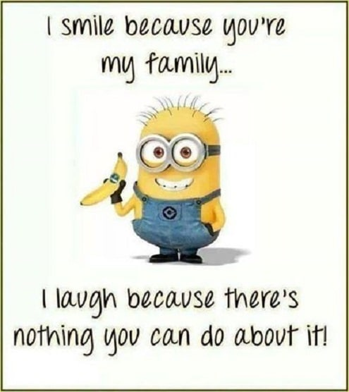 Minion Family Quotes