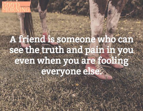 Best Friends Quotes Friendship