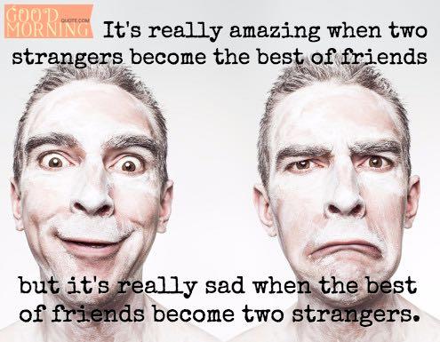 Best Friendship Quotes Friends