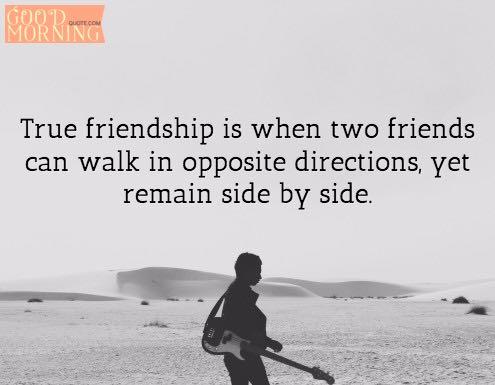 Best Friend Quotes about Friendship