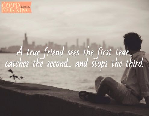 Best Friends Quotes about Friendship