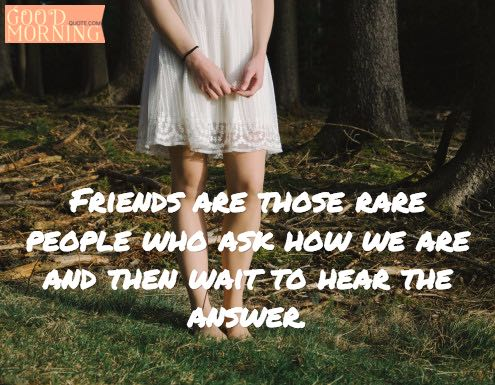 Funny Quotes about Friends