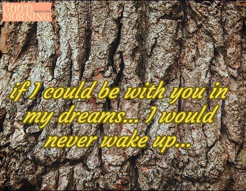 dream sweet quote