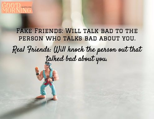 Best Friends Fake Friends Quotes