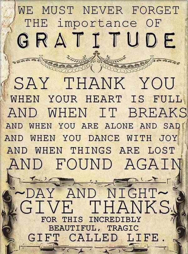 everyday thank you quotes