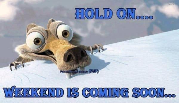 funny weekend sayings