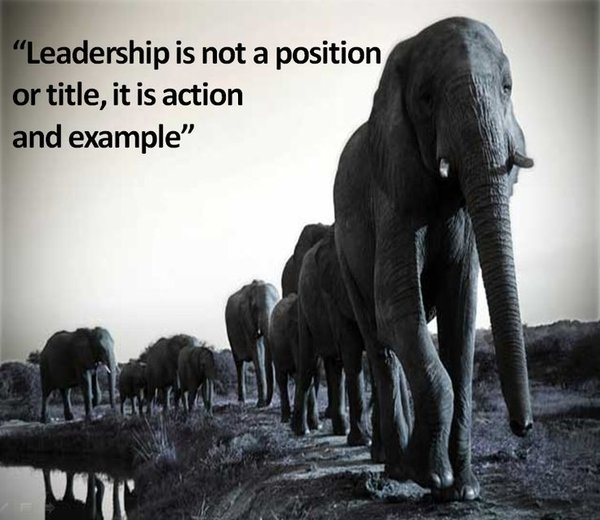 leadership teamwork quotes
