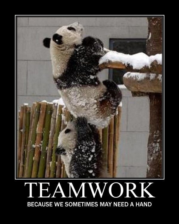 teamwork quotes and pictures