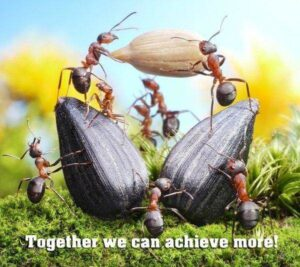 teamwork sayings funny