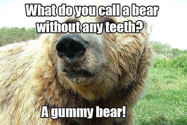22. What do you call a bear without any teeth?