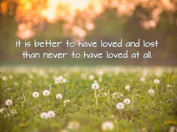 love lost quotes