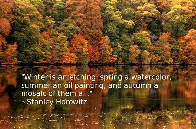 best-quote-about-winter
