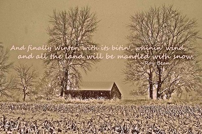 Cool Winter Quotes