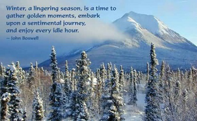 Funny Quote About Winter