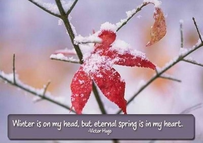 funny-winter-quotes