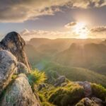 37 Beautiful Good Morning Images and Pictures to Download