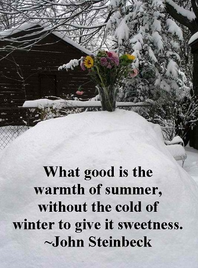 short-quote-about-winter