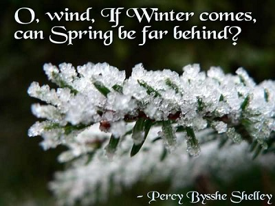 short-quotes-about-winter