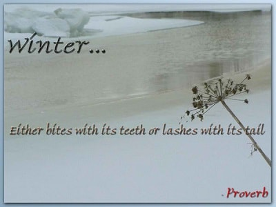 short-winter-quotes-1