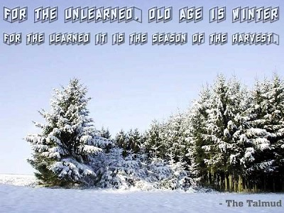 winter-quote
