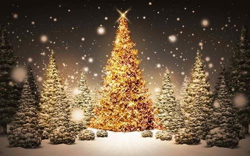 Beautiful Merry Christmas Pictures on Christmas Tree