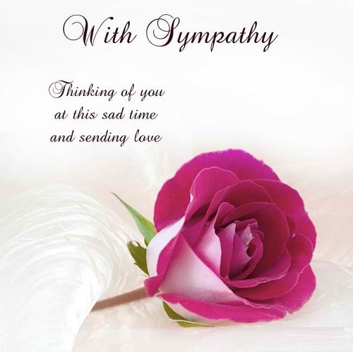31 Inspirational Sympathy Quotes for Loss with Images - Good ...
