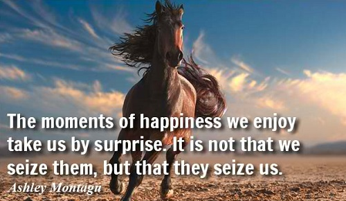 Motivational Best Quotes About Happy Moments