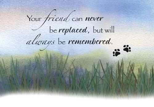 Sympathy Quotes for Loss of a Friend