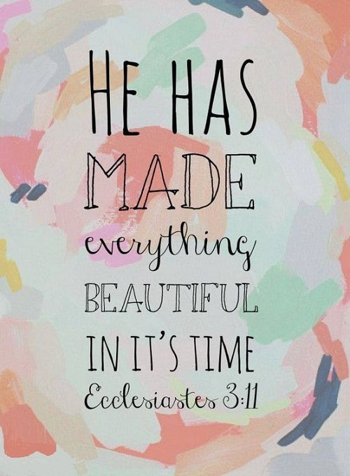 Beautiful in its Time Bible Quotes