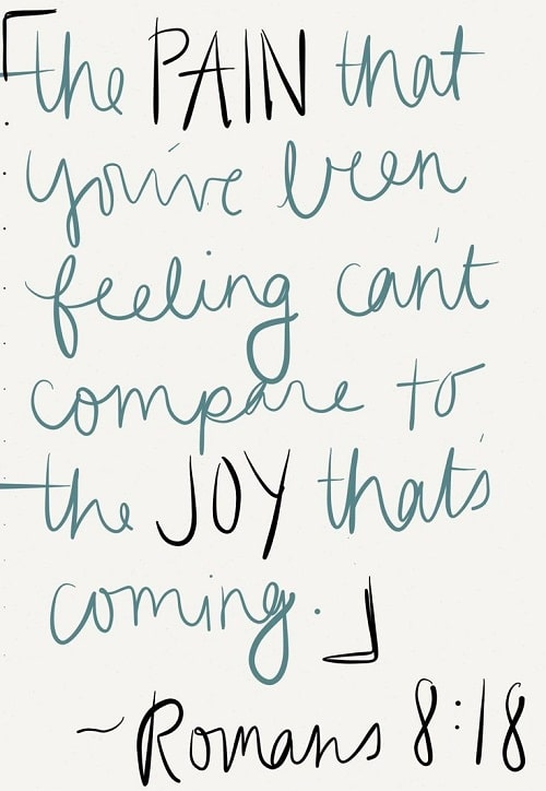 Compare to the Joy Bible Quotes