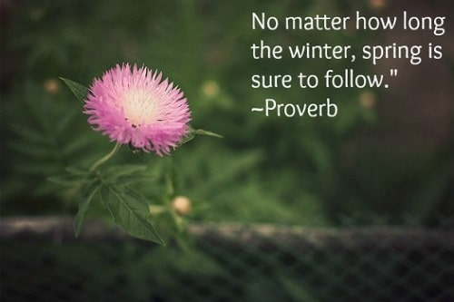 Cool Spring Quotes