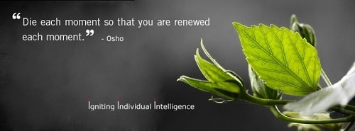 Cute Osho Quotes About Death