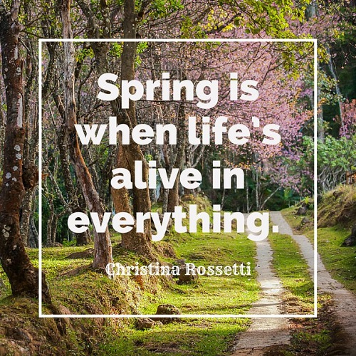 Cute Short Spring Quotes
