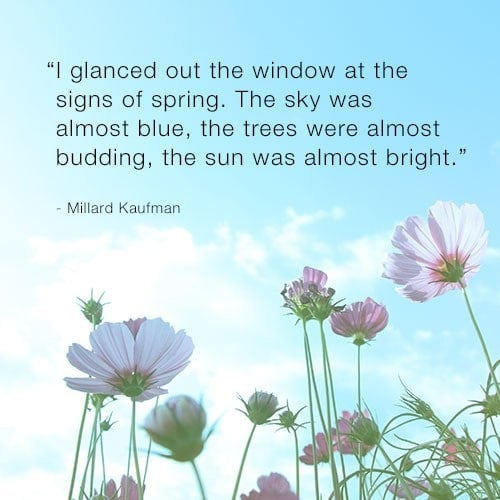 cute spring quotes and sayings
