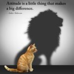 37 Best Short Quotes on Attitude with Images