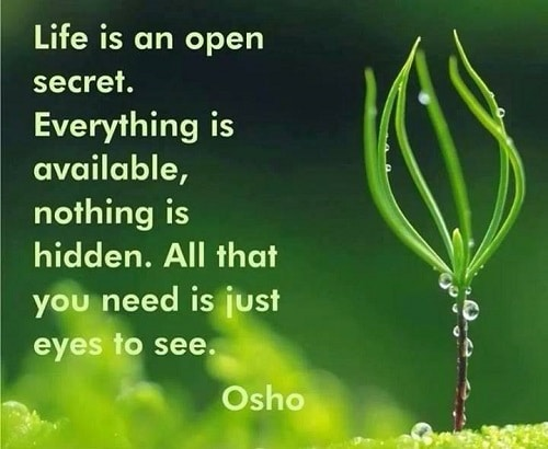 Happy Osho Quotes on Life