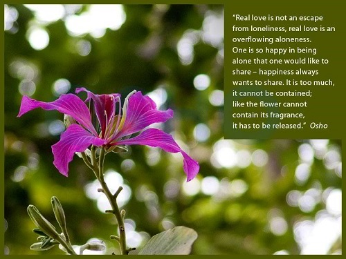 Inspirational Osho Quotes on Love