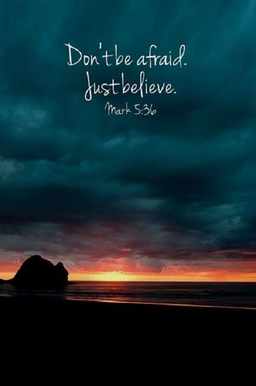 Bible Life Quotes Delectable 52 Inspirational Bible Quotes With Images  Good Morning Quote