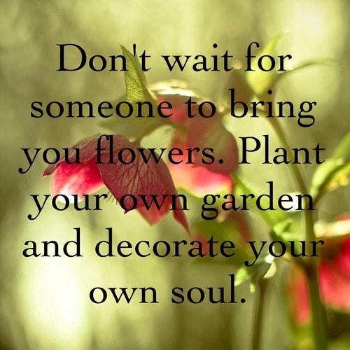 Osho Quotes on Flowers