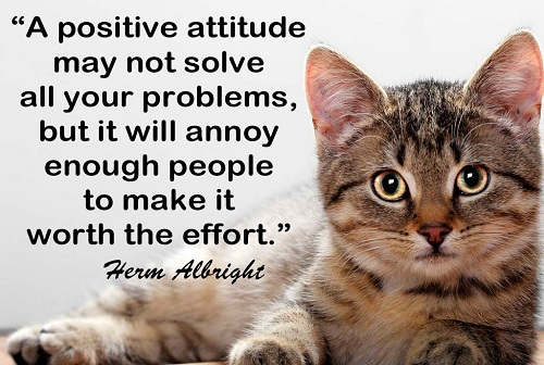 Quotes on Attitude and Success