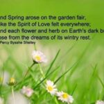 31 Spring Quotes and Sayings with Images
